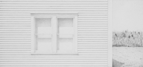 Summer Solitude, 2010, 23 x 50 cm, graphite on Stonehenge paper